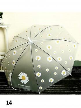 Matte Clear Daisy & Little Daisy Pattern Manual Umbrella