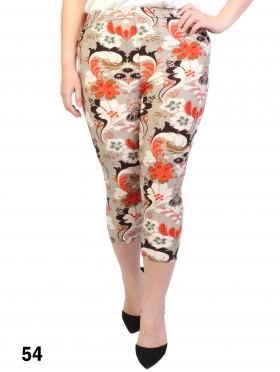 Plus Size Paisley Print Stretch Capri